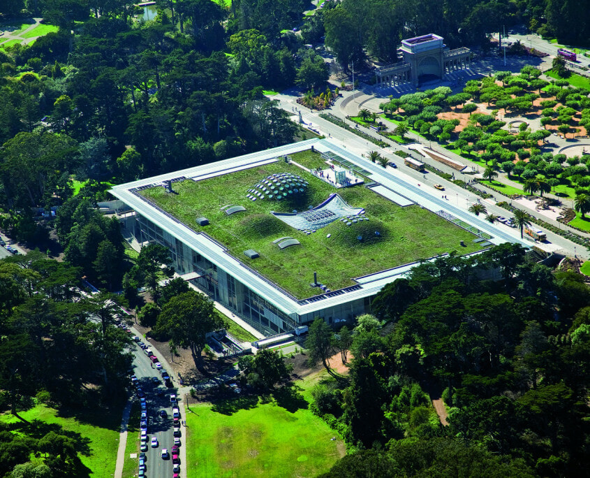 Califonia academy of science